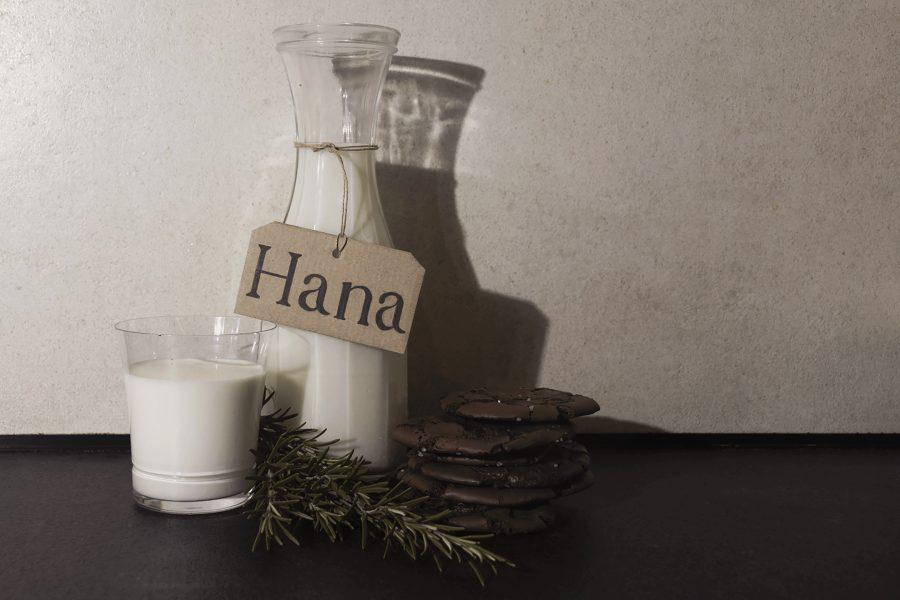 Hana Bajt (GIK2)