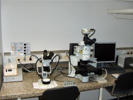 Olympus_mikroskop_bx61