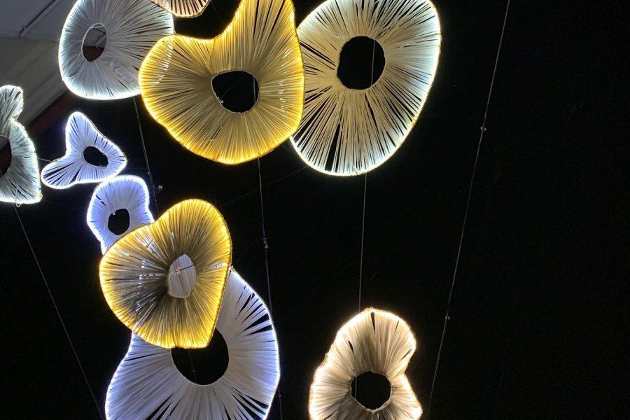 Svetlobna gverila: projekt IZPOD ZEMLJE